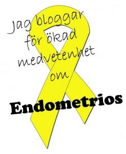 jag-bloggar-om endo246x300